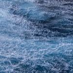 IMG_0688-(1-18-11-Pacific-Ocean)