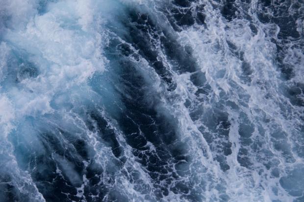 IMG_1833-(11-8-10-Indian-Ocean)