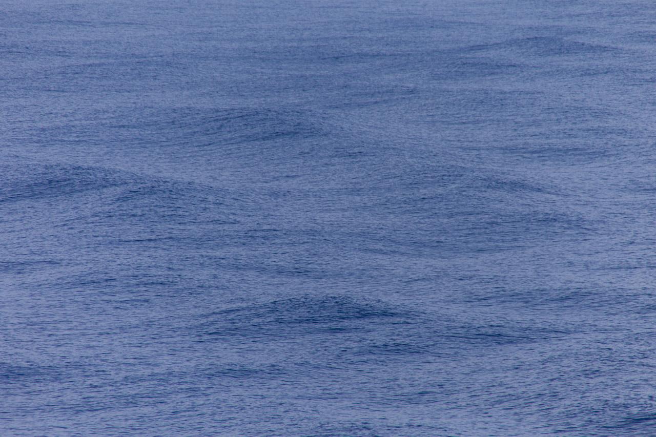 CARIBBEAN SEA #1