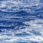 IMG_8165-(12-27-10-South-Pacific-Ocean)