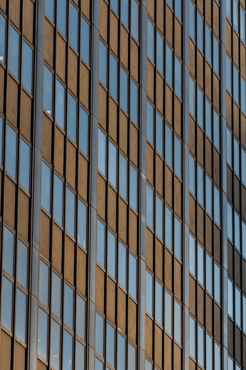 WINDOWS #8